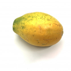 Papaya lechosa