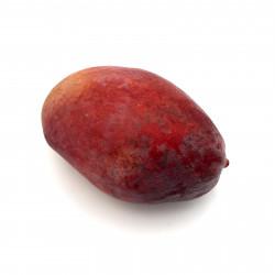 Mango Osteen unidad