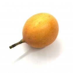 Granadilla Passiflora
